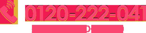 0120-222-041