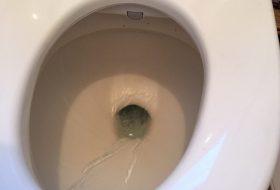 東京都葛飾区のトイレつまり修理業者を料金と事例で選ぶ