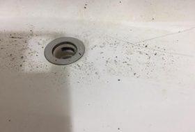 東京都大田区の風呂排水溝つまり修理業者を料金と事例で選ぶ